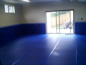My fledgling home dojo